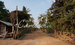 Camboida