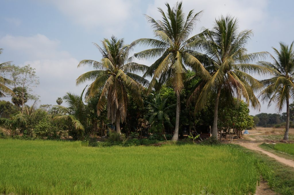 Even during dry season the landscape is still stunning